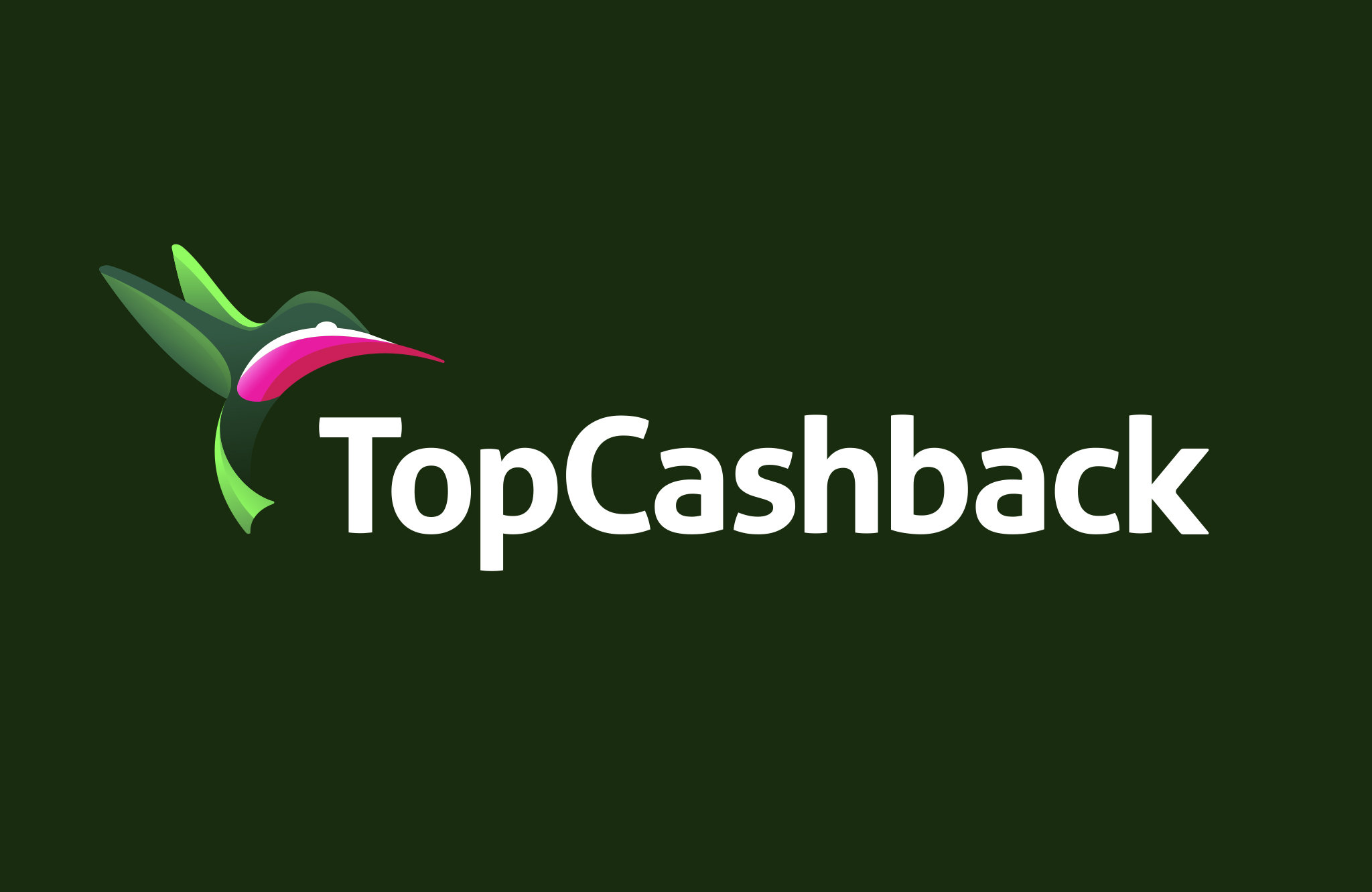 topcashback-ash-spurr_0008_Vector Smart Object